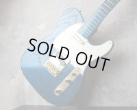 ESP Telecaster / All Blue