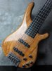 画像8: Tune TBC-5 Exotic Spalted Maple Sp