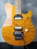 画像1: Music Man EVH Trans Gold (1)