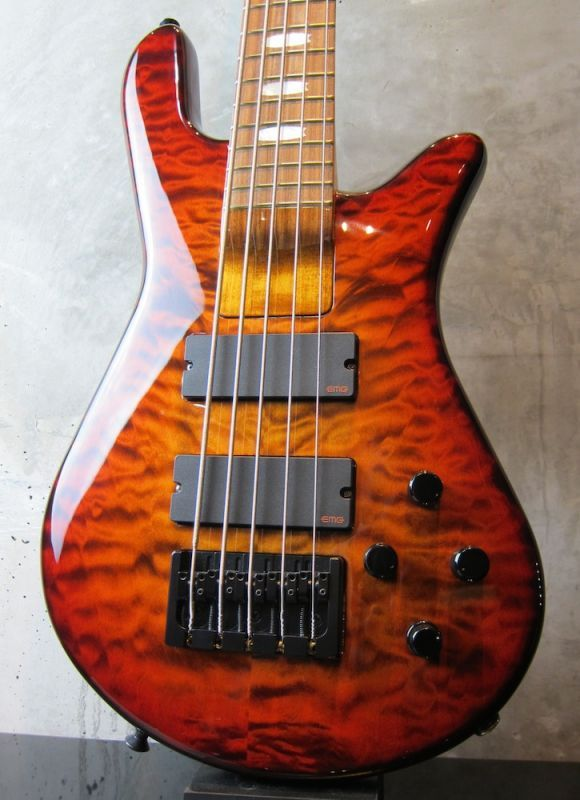 画像1: Spector USA NS-5H2 / Ultra Amber