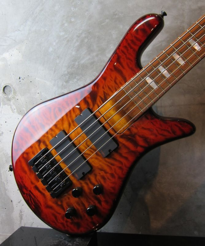 画像5: Spector USA NS-5H2 / Ultra Amber