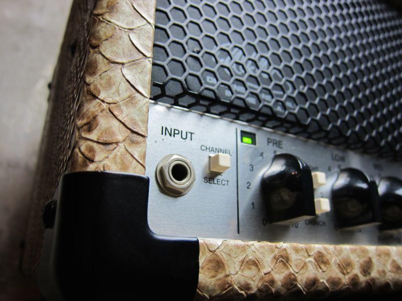 画像4: PEAVEY 5150 II Snake Skin