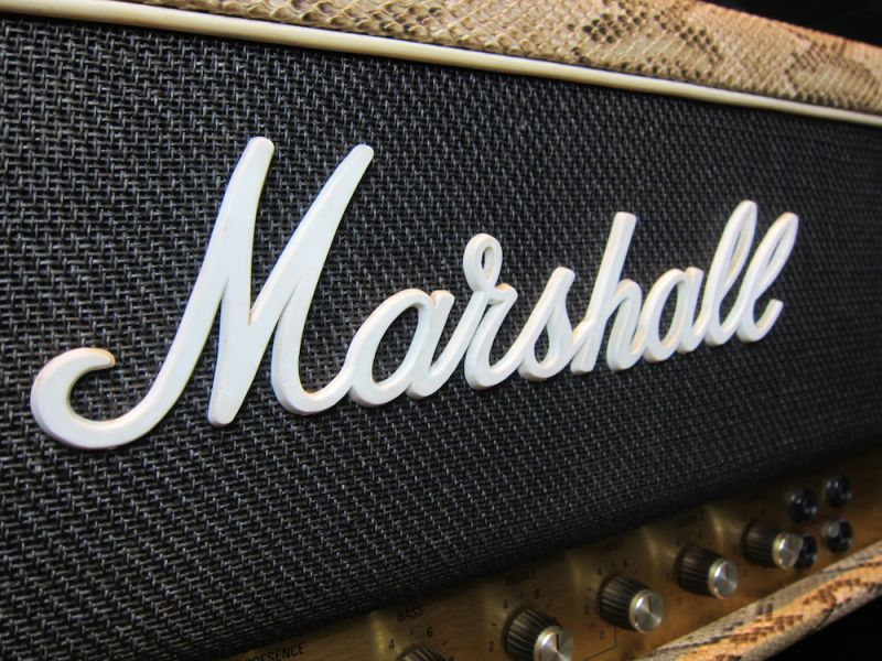 画像2: Marshall JCM800 MKII Snake Skin