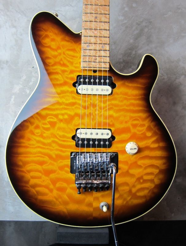 画像1: Terry Rogers Lisa / Birdseye Neck /Super Quilt Sunburst