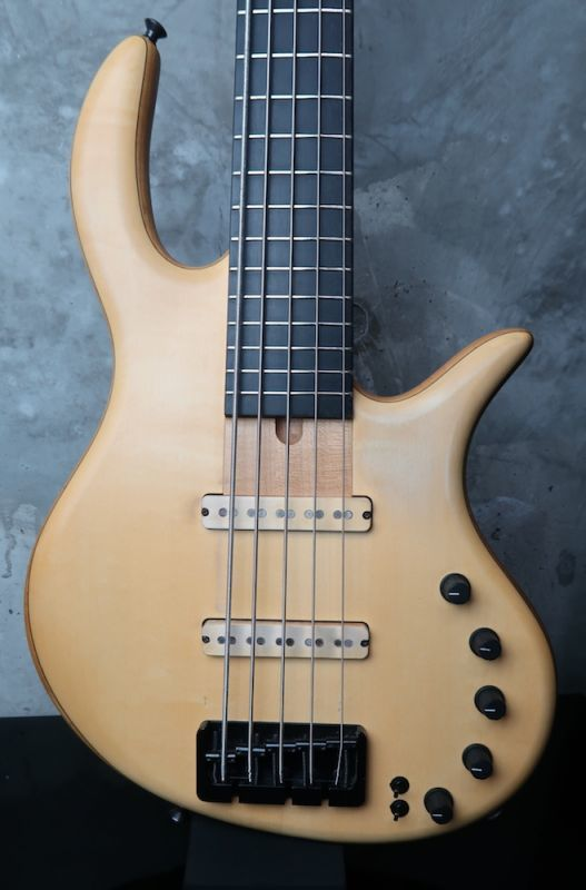 画像1: elrick Gold Series e-volution 5 Strings Bolt-on
