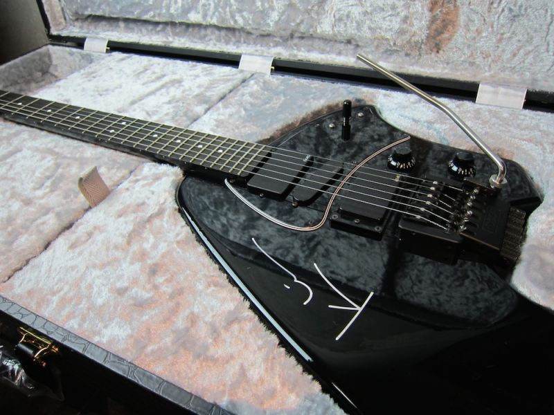 画像1: Steinberger  Drop-in Hard Case / オリジナルCASE作成